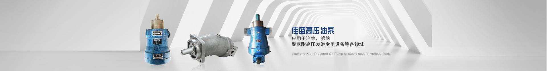 斜盘式柱塞泵